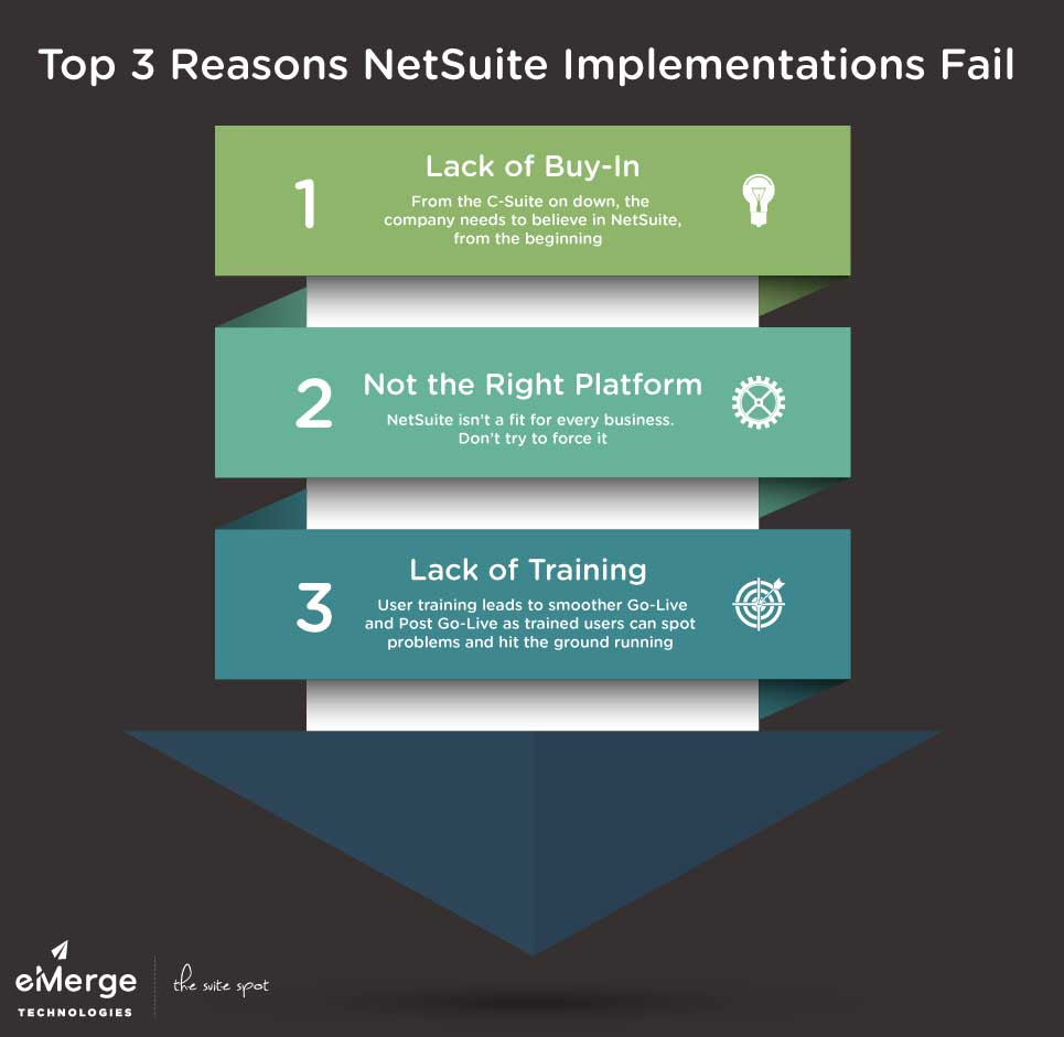NetSuite Implementation Issues